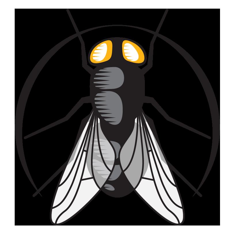 Plastic Fly