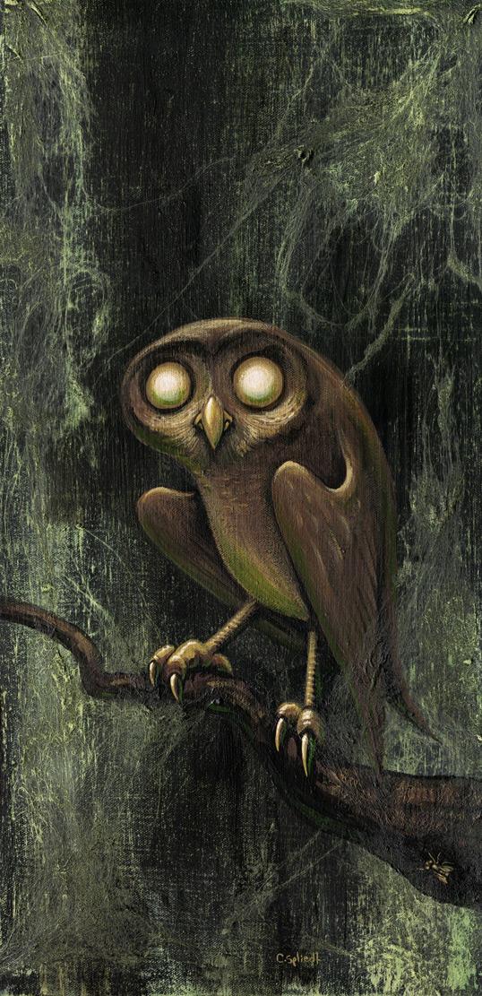 owl034.jpg