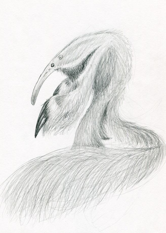anteater034.jpg